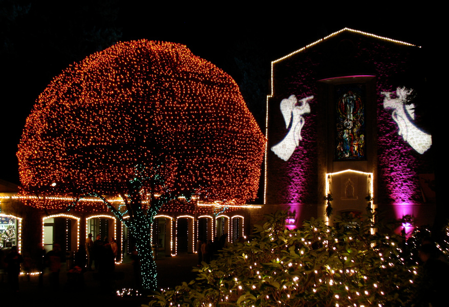 The complete guide to Portland Gardens | The Grotto Christmas Festival of Lights