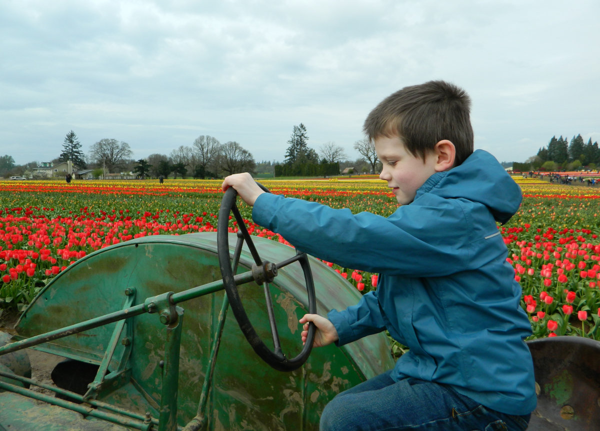 Photo-op with a tractor at the Wooden Shoe Tulip Festival