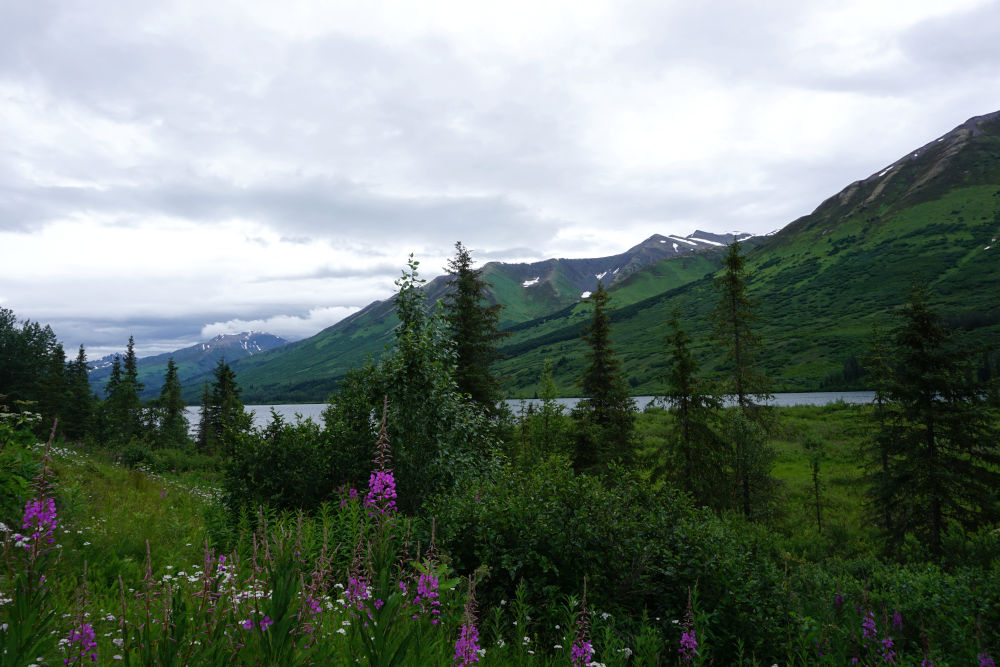 Portage Valley | Day Trips from Anchorage Alaska