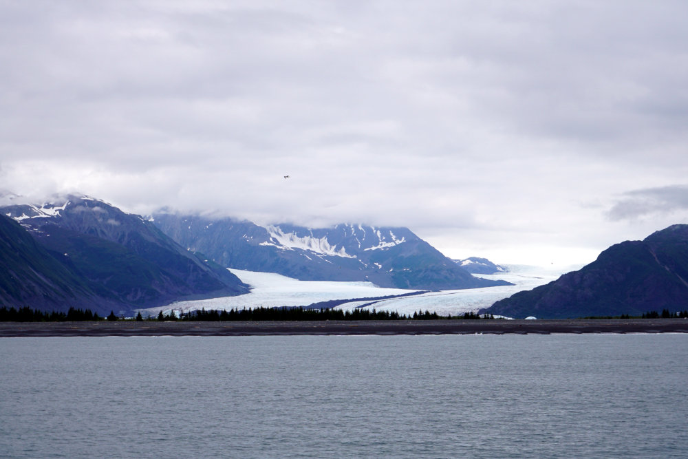 Wildlife viewing boat tour | Best things to do in Seward Alaska