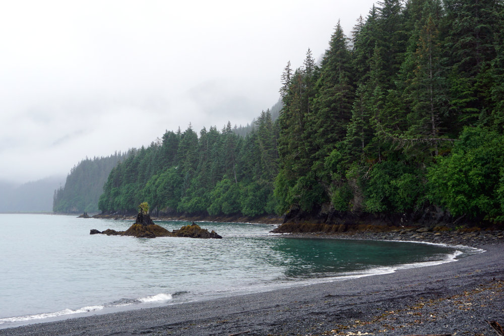 Lowell Point | Best things to do in Seward Alaska